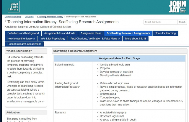 Screenshot of Teaching Information Literacy guide